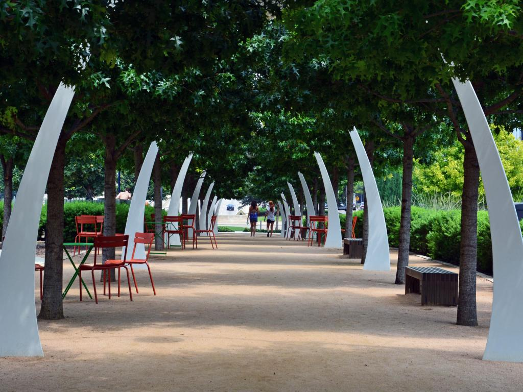 Oak tree alley at the Klyde Warren Park in downtown Dallas