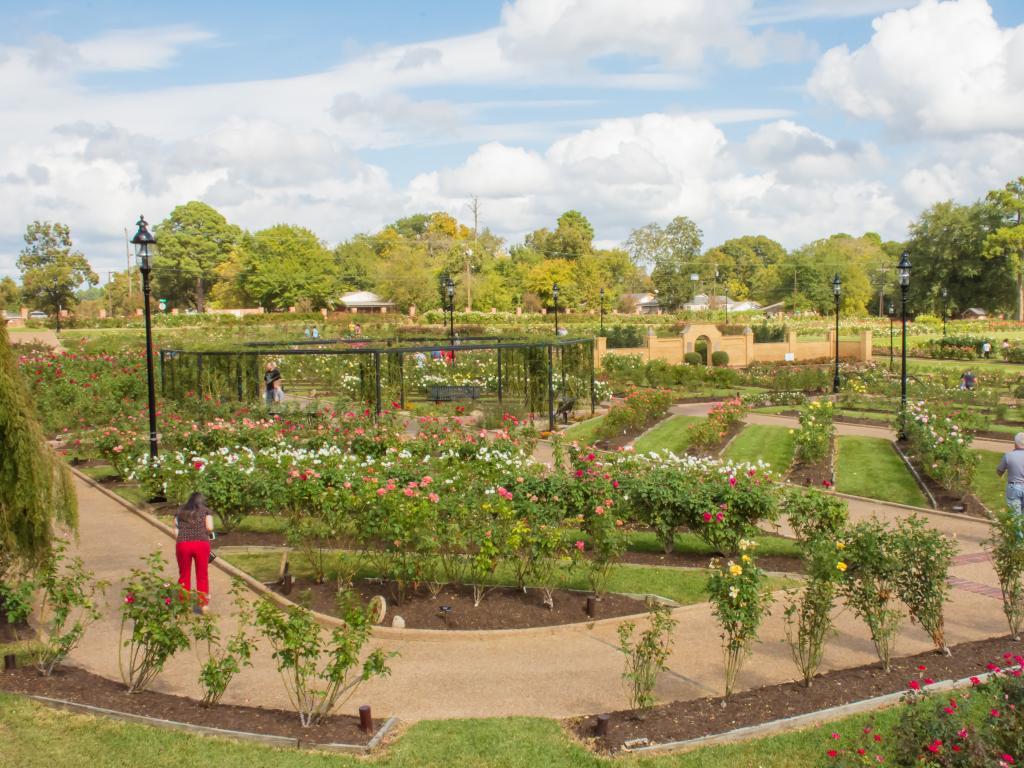 The 14 acre Municipal Rose Garden in Tyler, Texas