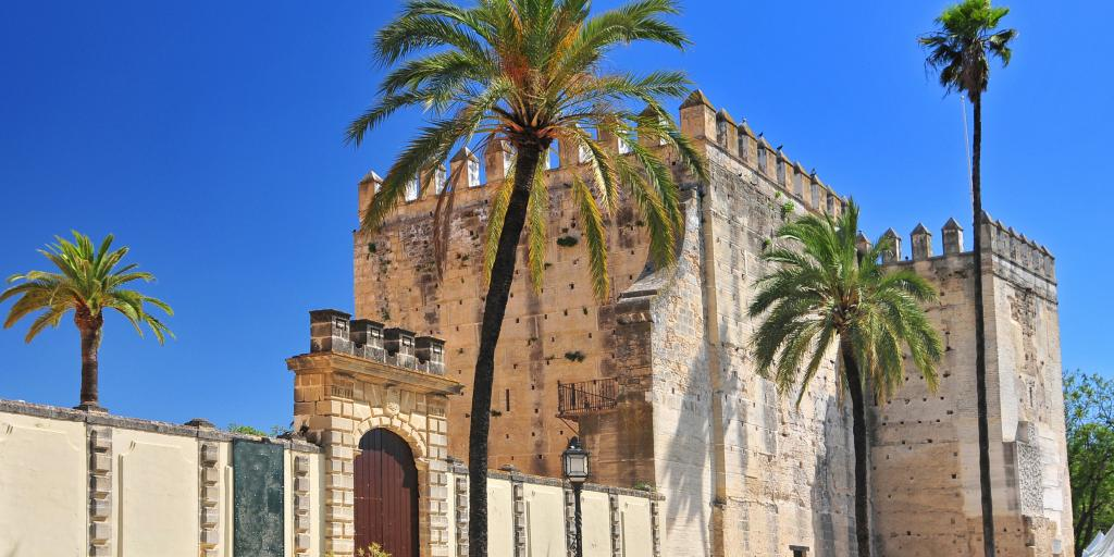 The Alcazar surrounded by palm trees, Jerez de la Frontera
