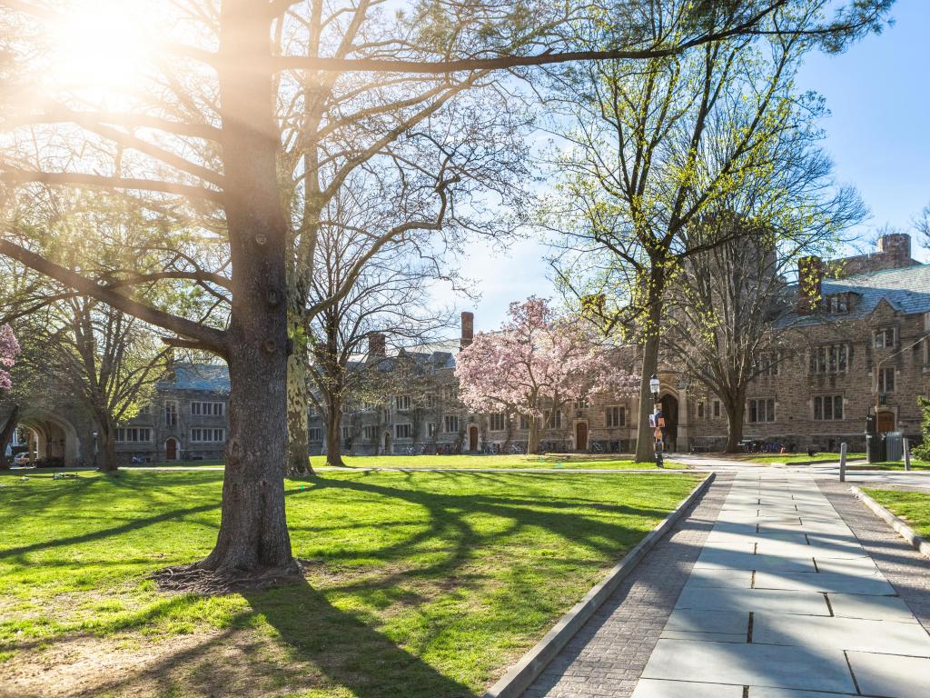 A large stone building at Princeton University with trees in front of it and the sun shining through