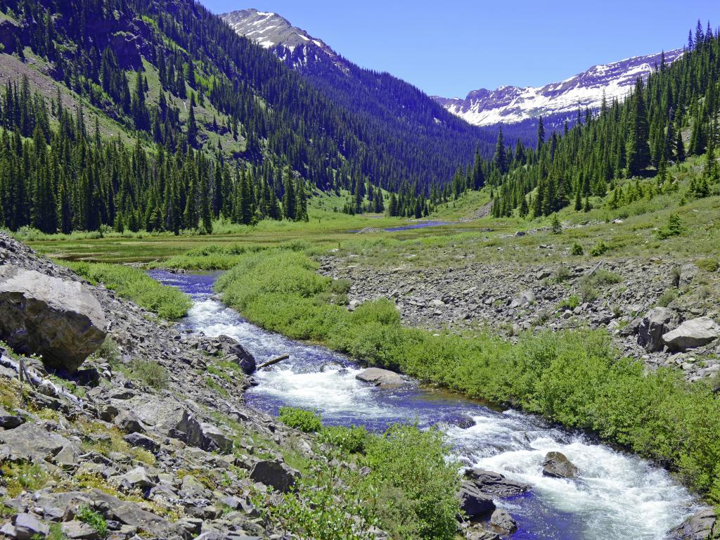 Hiking near Denver in the summer - walk along a stream in the Elk Range, Rocky Mountains