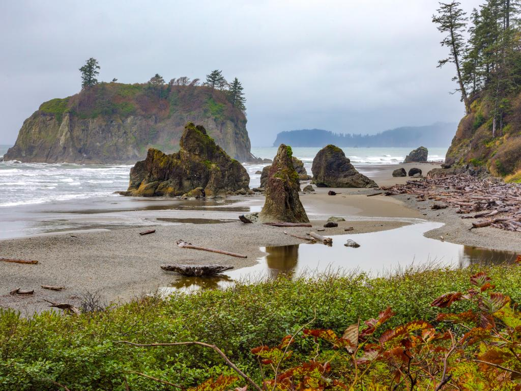 Pacific Coast view from Ruby Beach