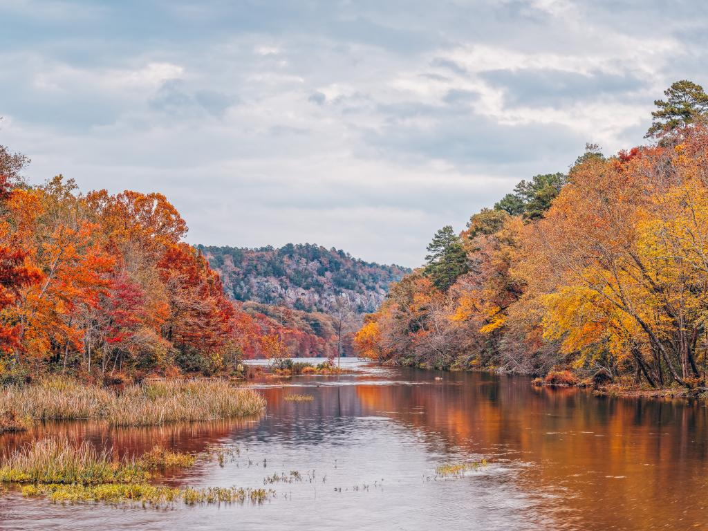 Beautiful fall leaves along the Mountain Fork River in Beavers Bend State Park, Oklahoma.