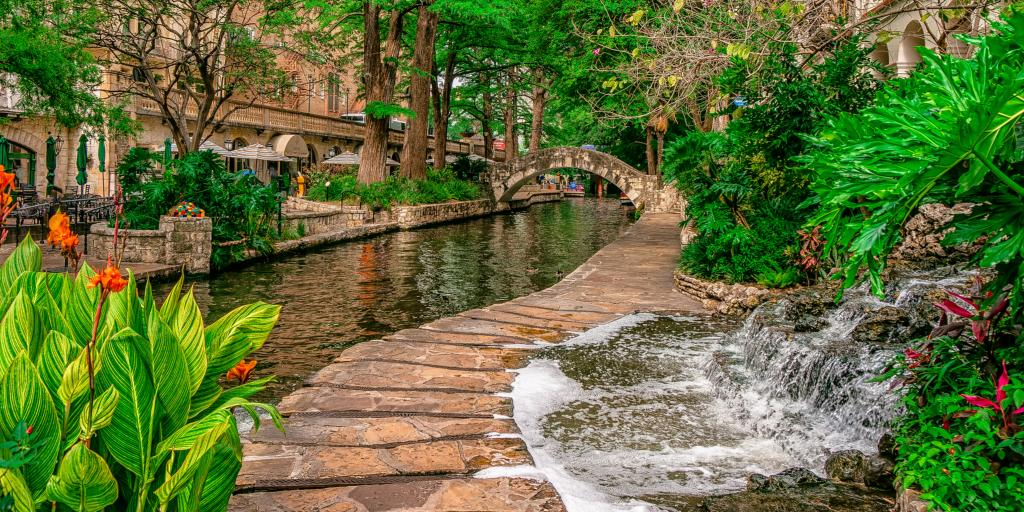 The San Antonio Riverwalk by day with green plants fringing the river