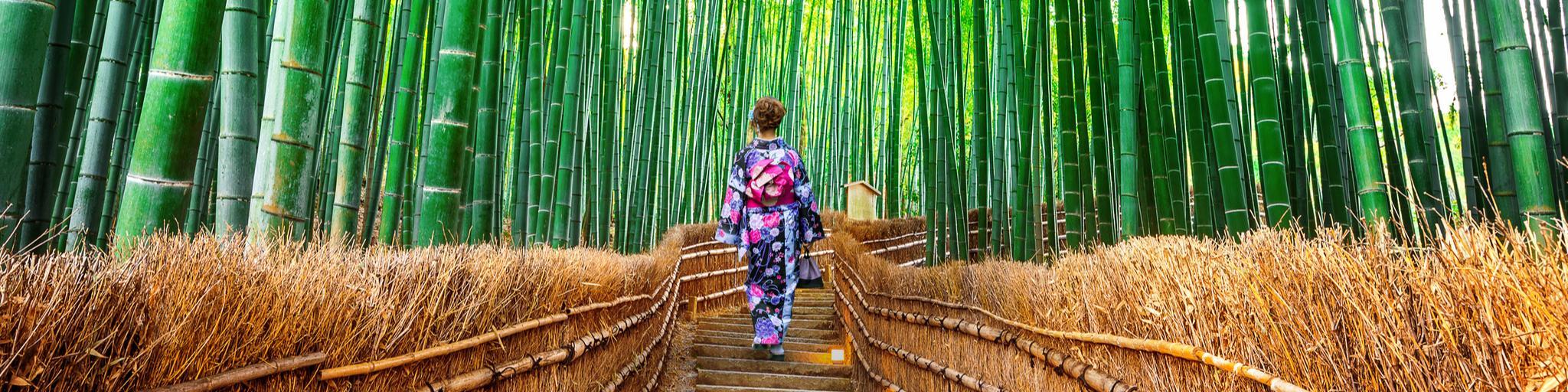 A woman dressed in a kimono walking through Arashiyama Bamboo Grove, Kyoto