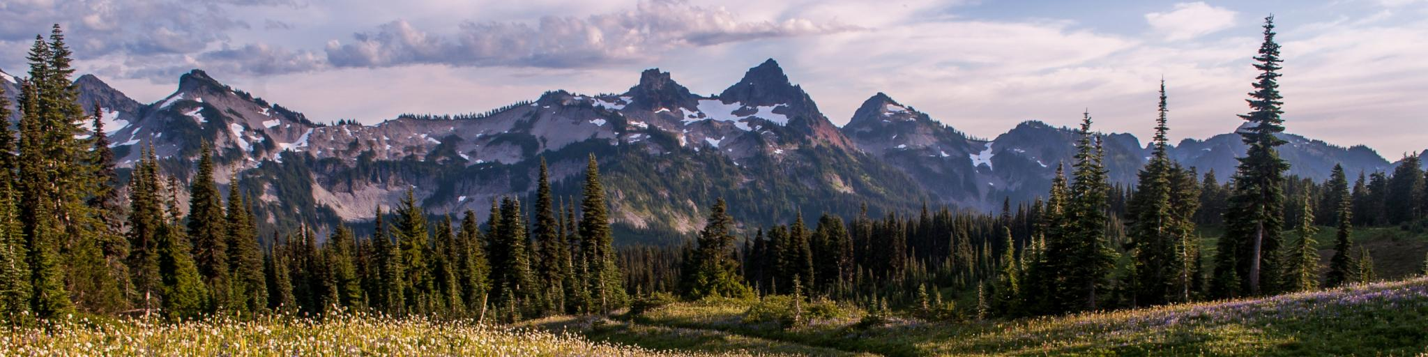 Pacific Northwest road trip goes through the Mt Rainier National Park