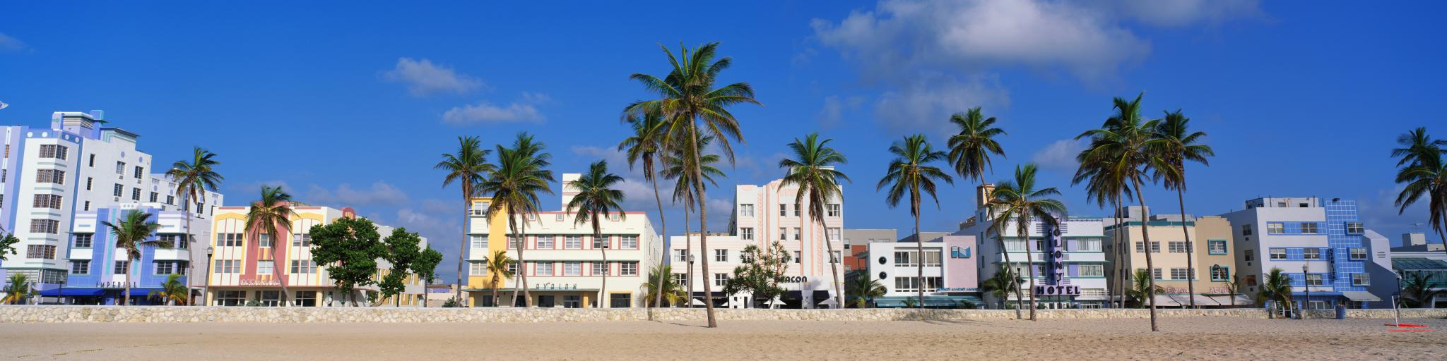Art Deco buildings and palms growing along South Beach, Miami