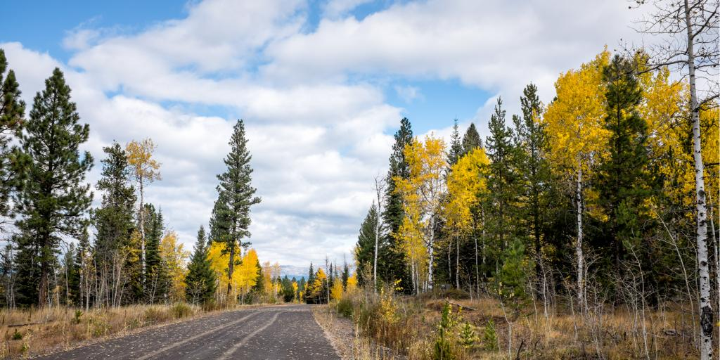Driving through autumn colours to McCall, Idaho