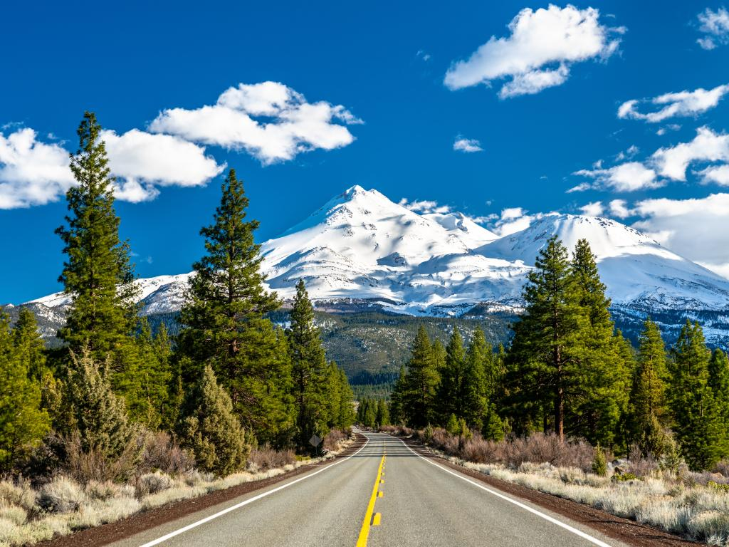 Highway towards Mount Shasta in the Shasta-Trinity National Forest in northern California.