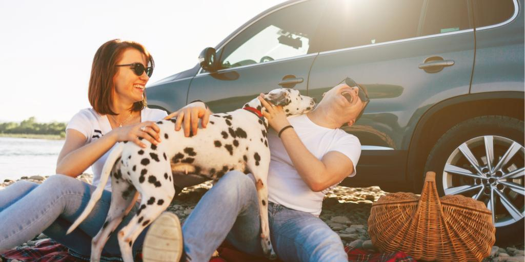 A couple have a picnic with their dog next to their car on a road trip