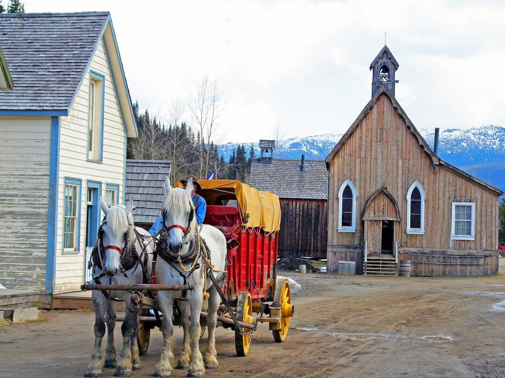 Horses in historic town of Barkerville, British Columbia, Canada