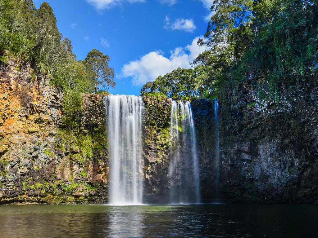 Dangar Falls near Dorrigo and the Dorrigo National Park are just one of the many beautiful stops along the way.