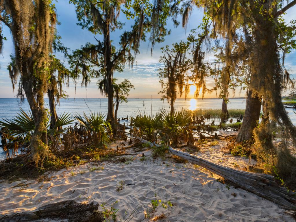 Fontainebleau State Park on Lake Pontchartrain Northshore, near New Orleans, Louisiana.