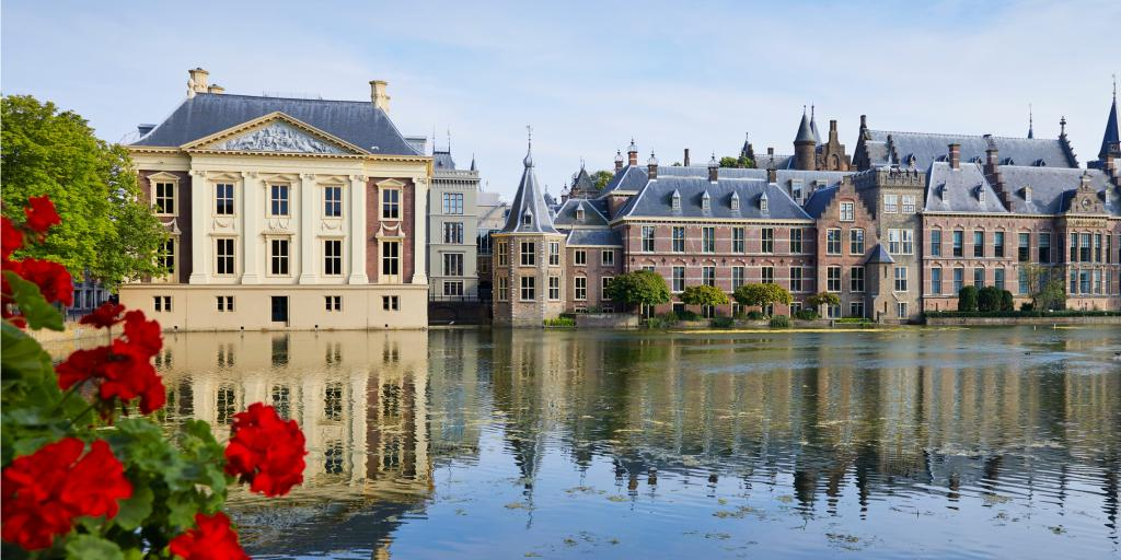 Mauritshuis Museum, The Hague over water with some red flowers
