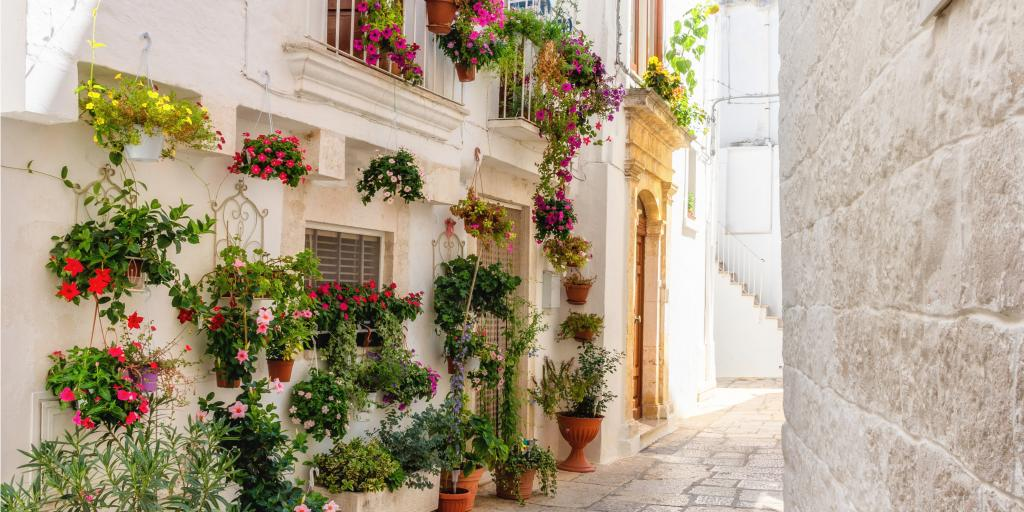 An alleyway in Cisternino full of colourful flowers