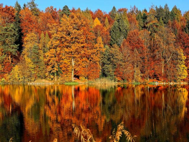 14 amazing places to see the autumn leaves in Europe