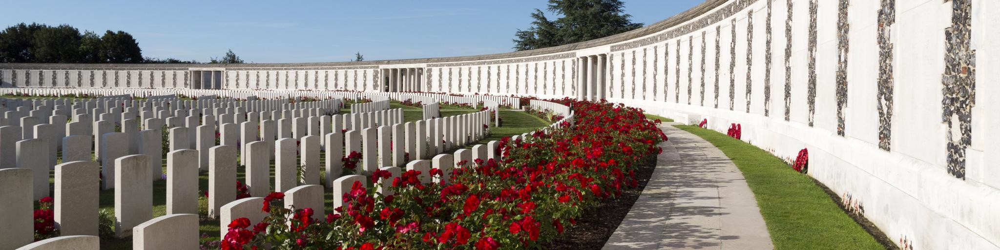 Poppies growing between white war graves at Tyne Cot World War One Cemetery on a sunny day
