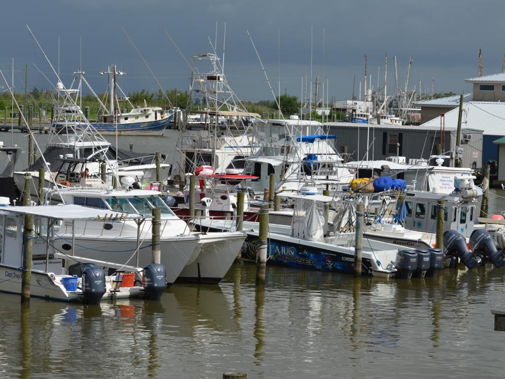 Fishing boats in the Venice Marina, Plaquemines Parish, Louisiana.