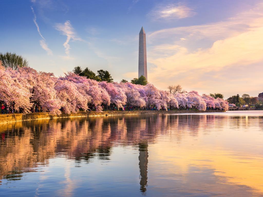 Washington Monument at Washington DC, USA