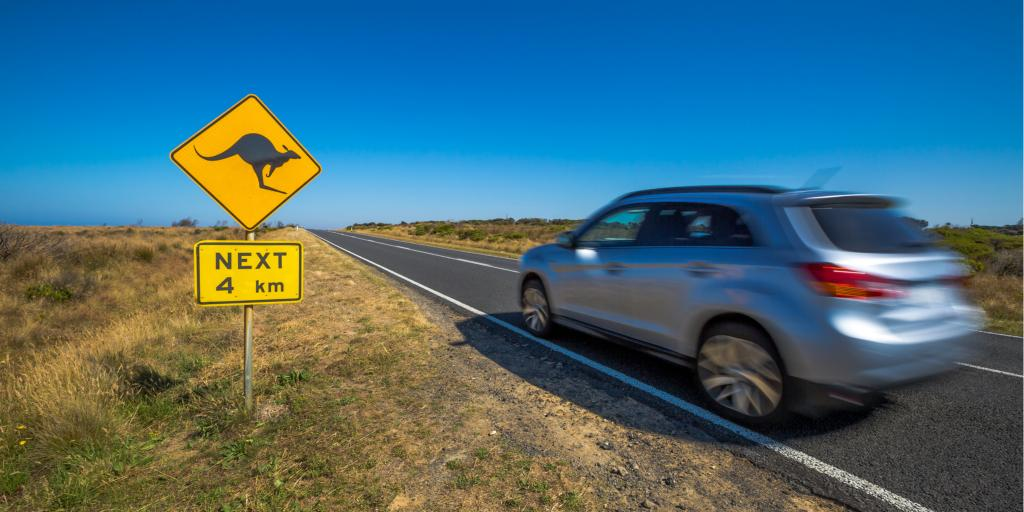 A car passes a kangaroo sign while driving in Australia