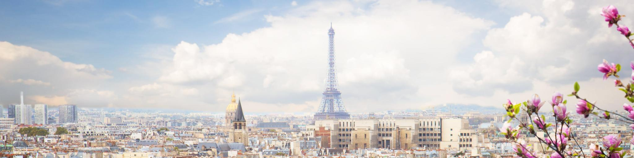 A view of the Paris skyline with the Eiffel Tower visible and cherry blossoms in the foreground