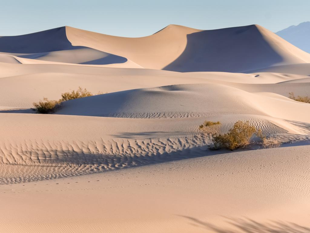 Sunrise in the Mesquite Flat Sand Dunes in Death Valley National Park, California