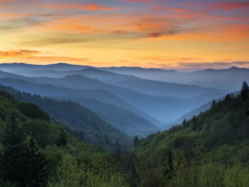 The characteristic blue haze of the Great Smoky Mountains as  the sun rises in North Carolina