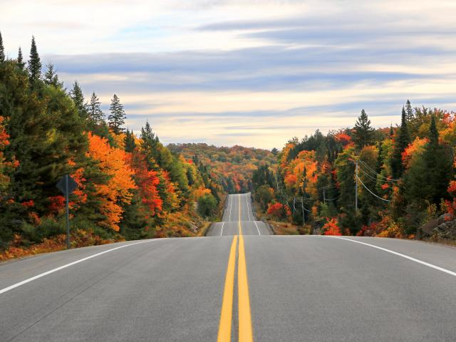 Road trip from Toronto through Algonquin Provincial Park in the fall in Ontario, Canada