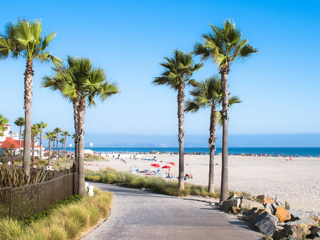 The near-perfect beaches in San Diego are great to go to all year round
