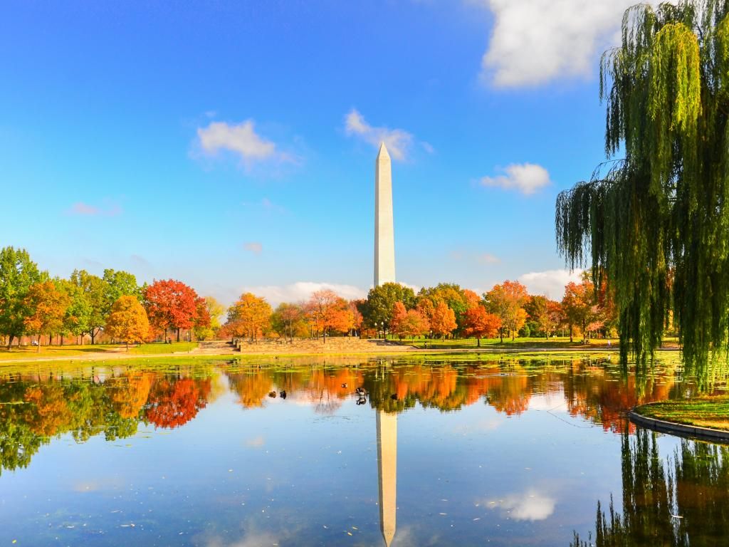 Washington Monument in the fall - a view from Washington D.C.'s Constitution Gardens