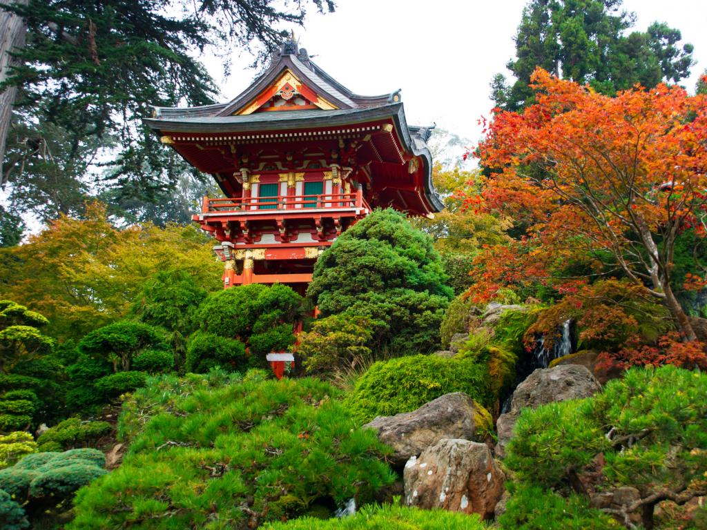 Japanese Tea Garden in Golden Gate Park in San Francisco