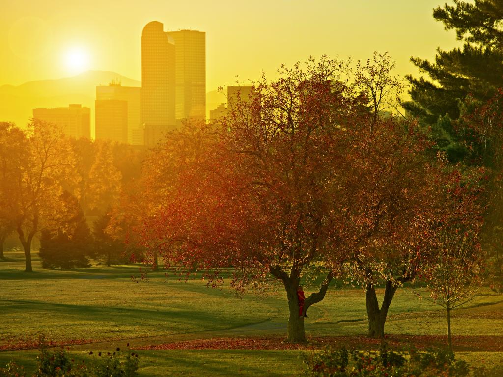 A park in Denver in the fall with golden leaves and a beautiful sunset