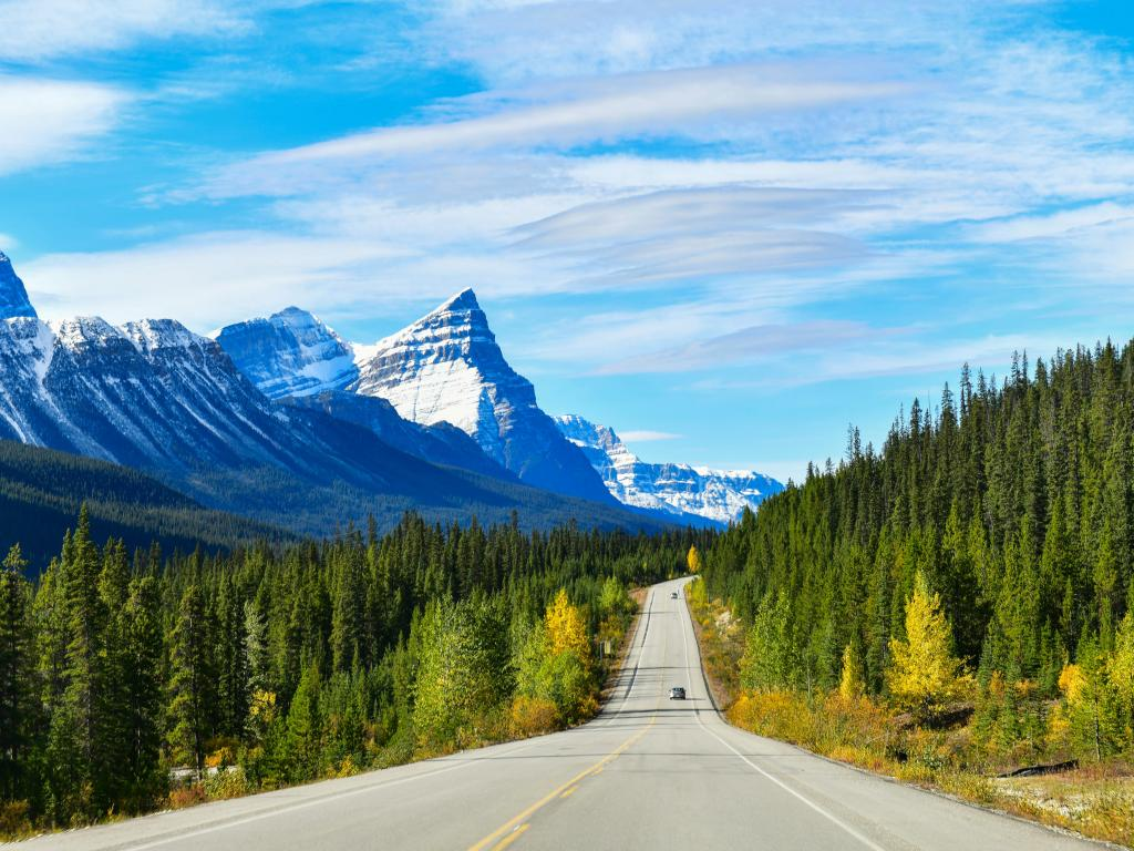 Scenic Highway 93 in Alberta passing through forests and mountains between Banff and Jasper National Parks.