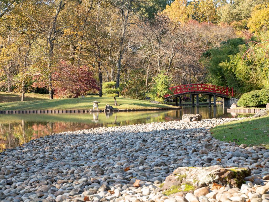 Lake at the Japanese Garden at Memphis Botanic Garden