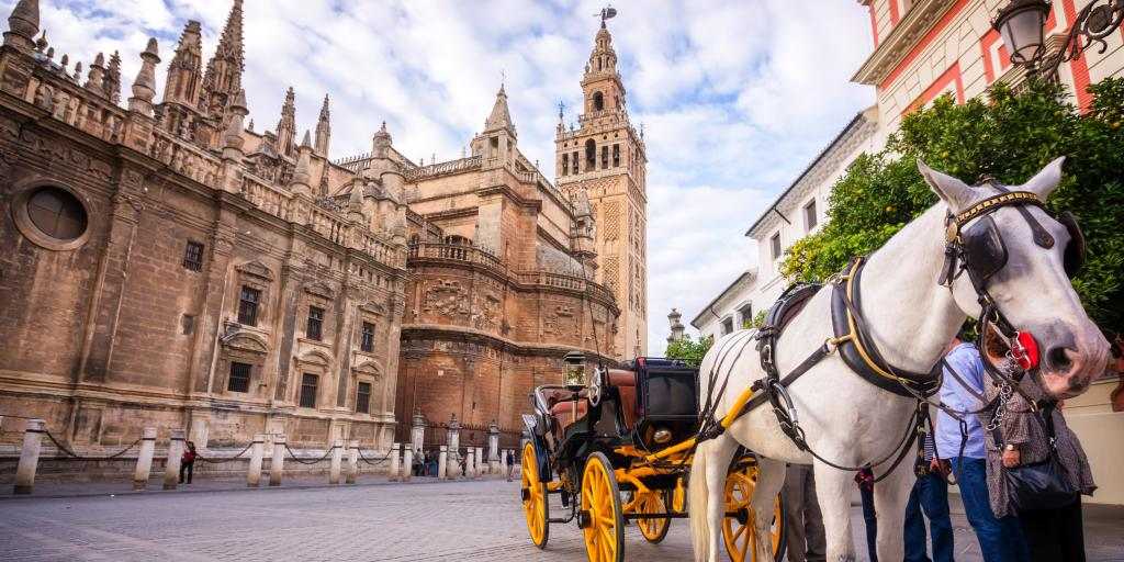 Seville Cathedral with a horse carriage at the front