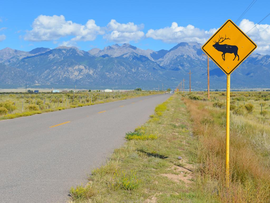 A warning road sign for elk/deer in along a scenic road in Wyoming.