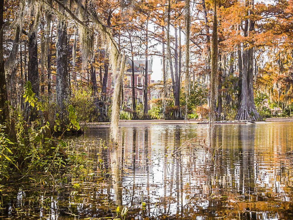 The stunning Cypress Lake in downtown Lafayette, Louisiana.