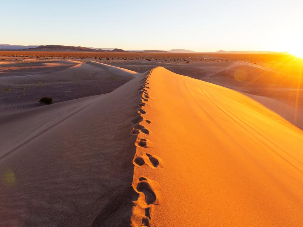 Footprints along the crest of a sand dune at sunrise in the Death Valley National Park, California.
