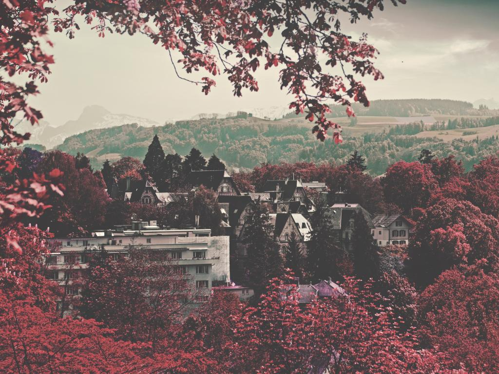 Red-leafed trees surround the canton of Bern in Switzerland
