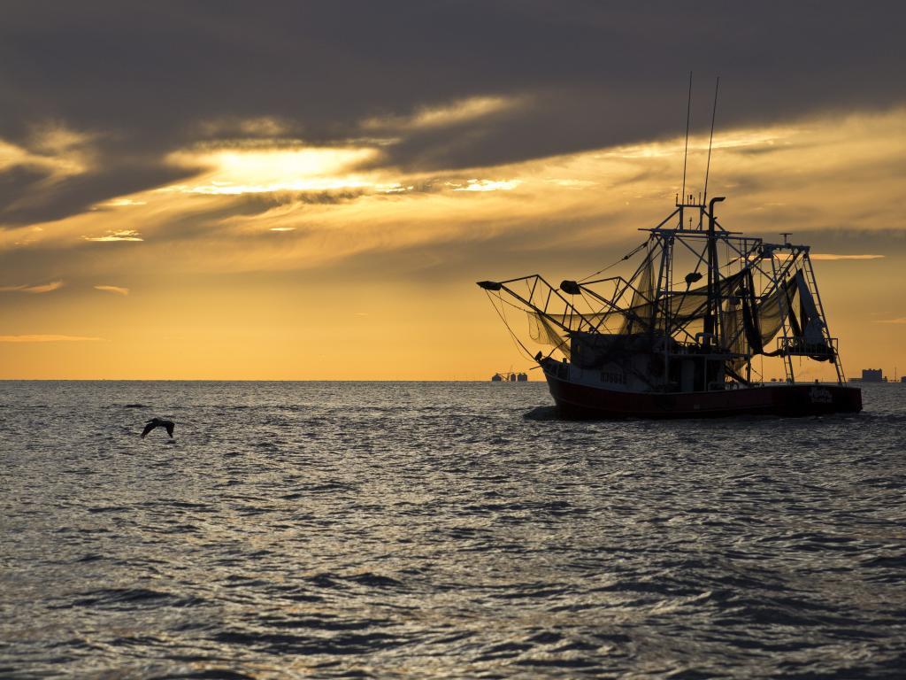 A fishing boat near Biloxi, Louisiana