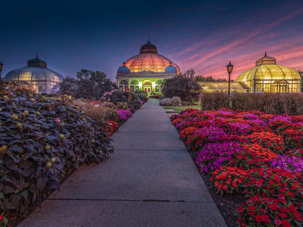 A picturesque view of a lit Buffalo and Erie County Botanical Gardens after sunset and vibrant flowers in the pathway in front of the garden