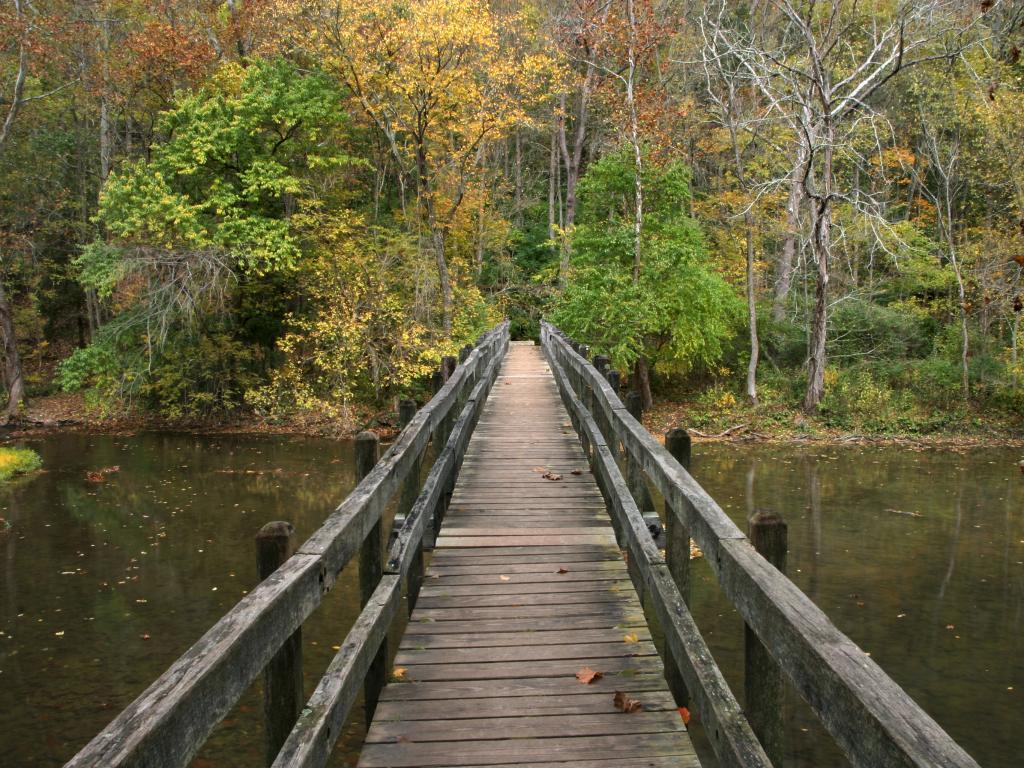 Wooden Foot Bridge, John Bryan State Park near Yellow Springs, Ohio