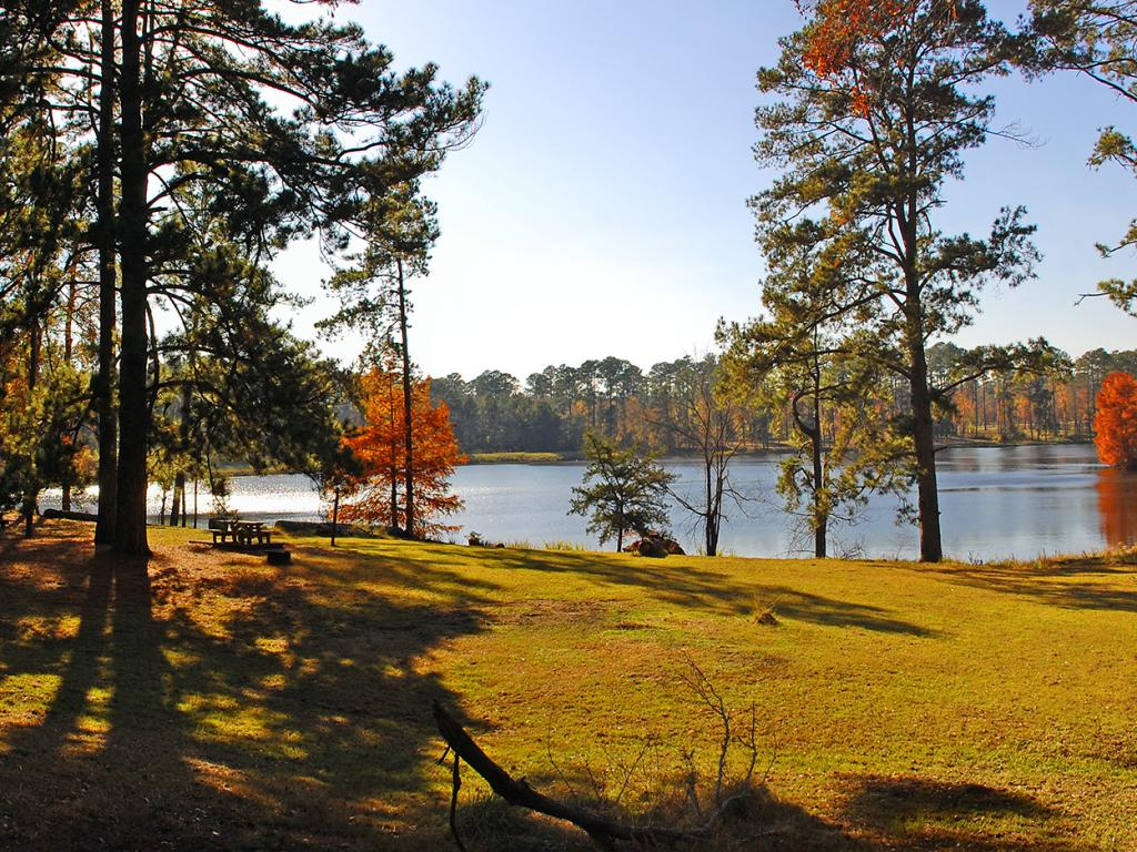 Ratcliff Lake in the fall in the Davy Crockett National Forest, Texas