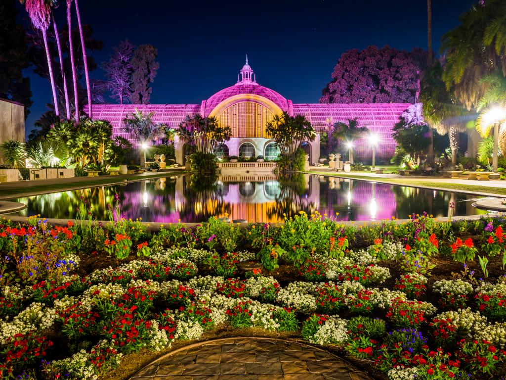 A purple lit Botanical building with different variety of flowers in red, white, violet, and blue and palm trees surrounding the water in Balboa Park, San Diego, California
