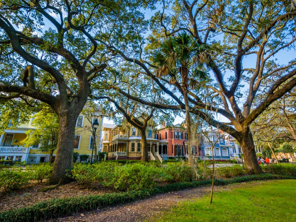 Historic houses lining Forsyth Park with grand live oak trees, in Savannah, Georgia