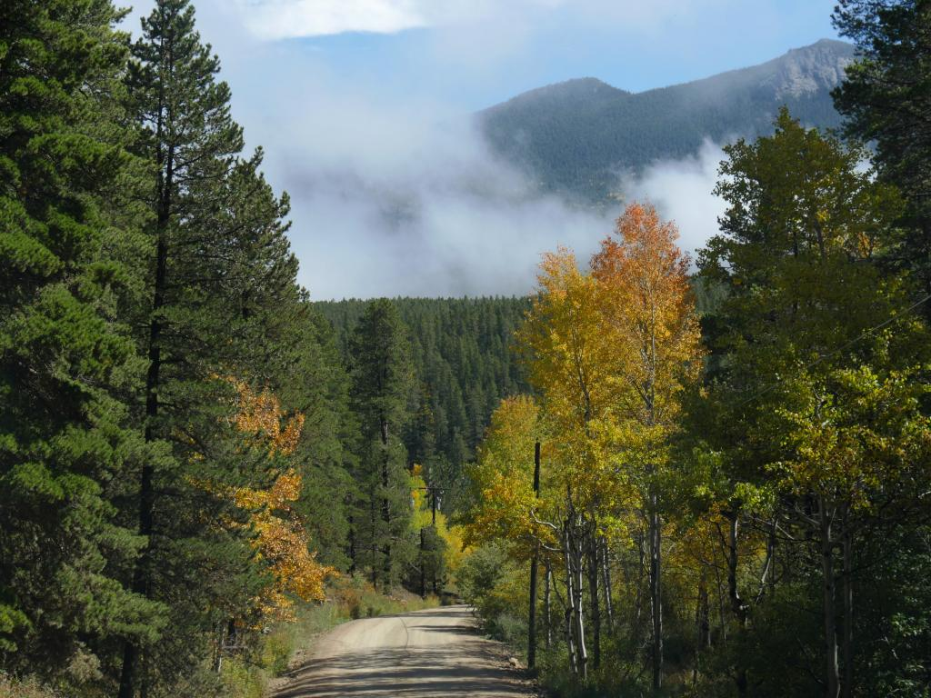 Side road full of trees at the Golden Gate Canyon State Parks, Colorado in autumn with mist not totally covering the mountain background