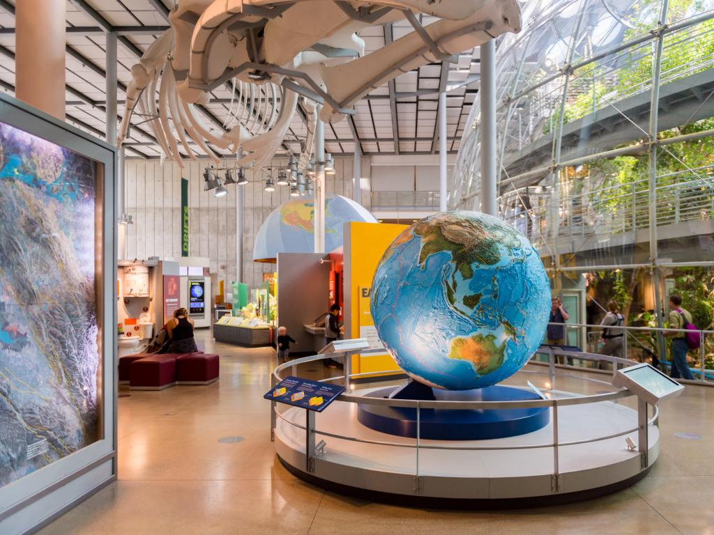 The interior of the California Academy of Sciences natural history museum
