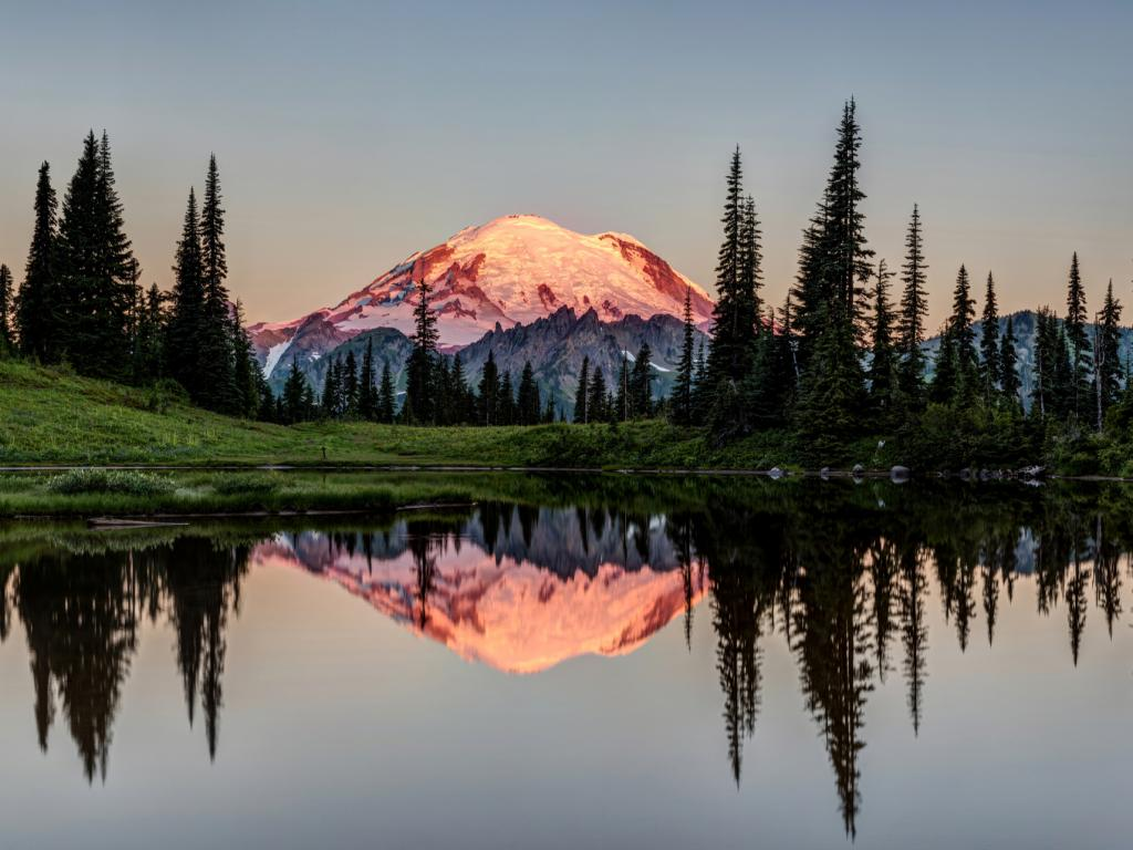 The snow-capped tip of Mount Rainier glows in the sunrise at Mt Rainier National Park