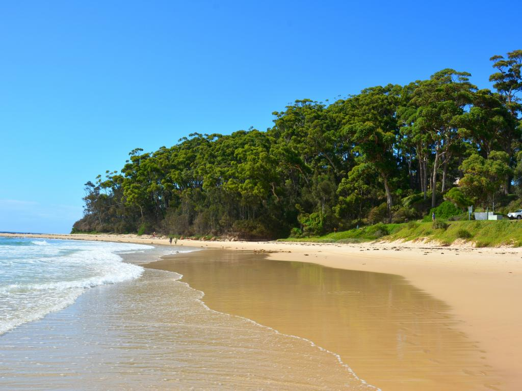 The pristine Mollymook Beach in Ulladulla, New South Wales, Australia