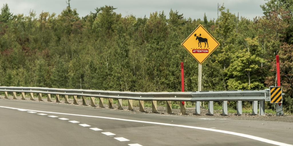 A moose crossing sign on the side of the road - Trans Canada Highway in Quebec